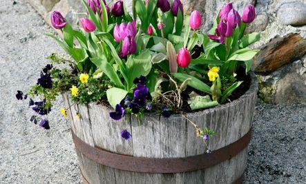 cute diy flower pot ideas garden ideas pinterest