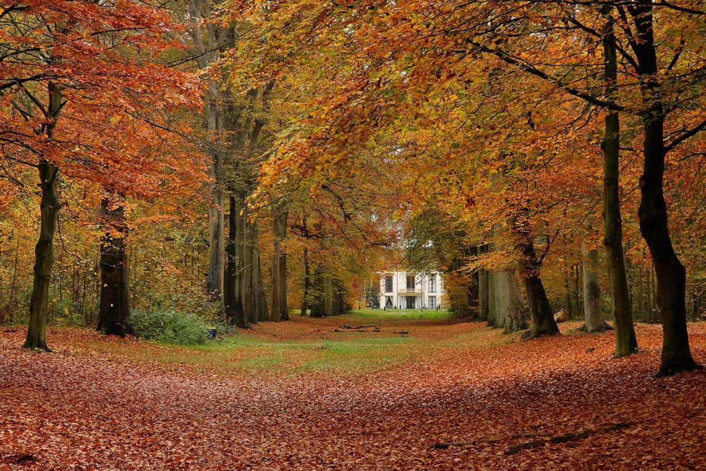 Autumn Desktop Wallpaper autumn desktop backgrounds