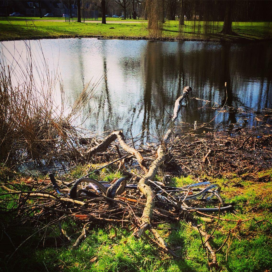 #molenvlietpark #zwijndrecht