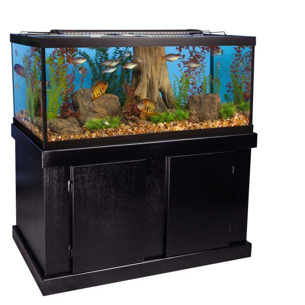 Marineland Majesty Aquarium Stand Ensemble 75 Gallon 75 Gallon Aquarium Aquarium Stand Aquarium Fish Tank