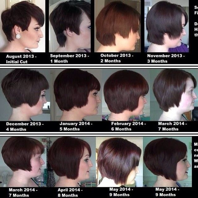 Oxlisalouxo On Instagram My 9 Months Of Growing Out My Pixie You Can Find The 2 Monthly Growing Out Short Hair Styles Hair Growth Stages Growing Short Hair