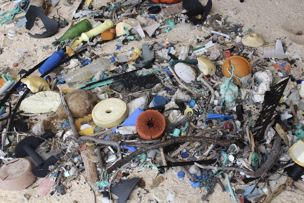 The incredible rubbish density on Henderson Island has horrified researchers.