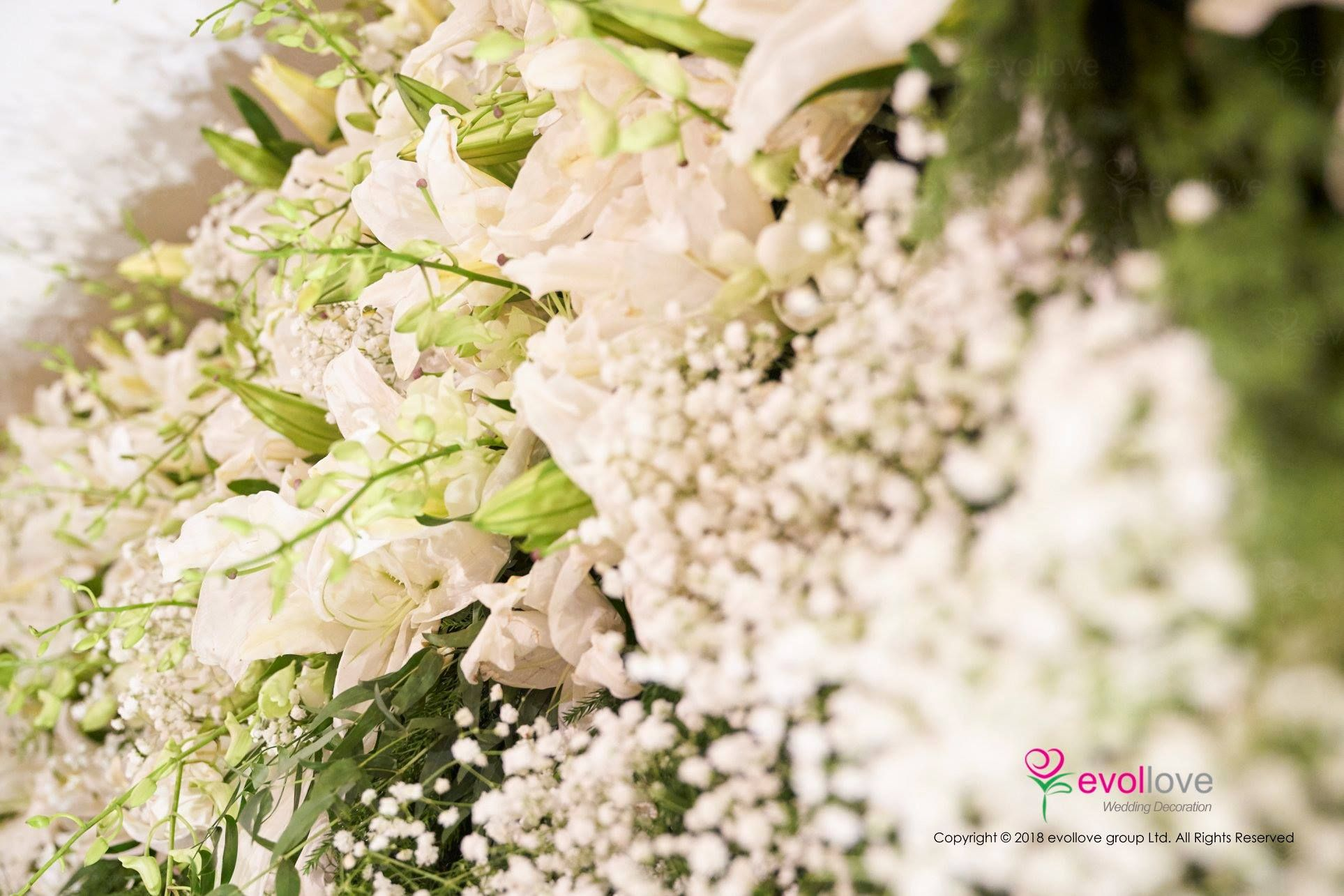 Lily and Baby Breathe flower wall backdrop. If you are