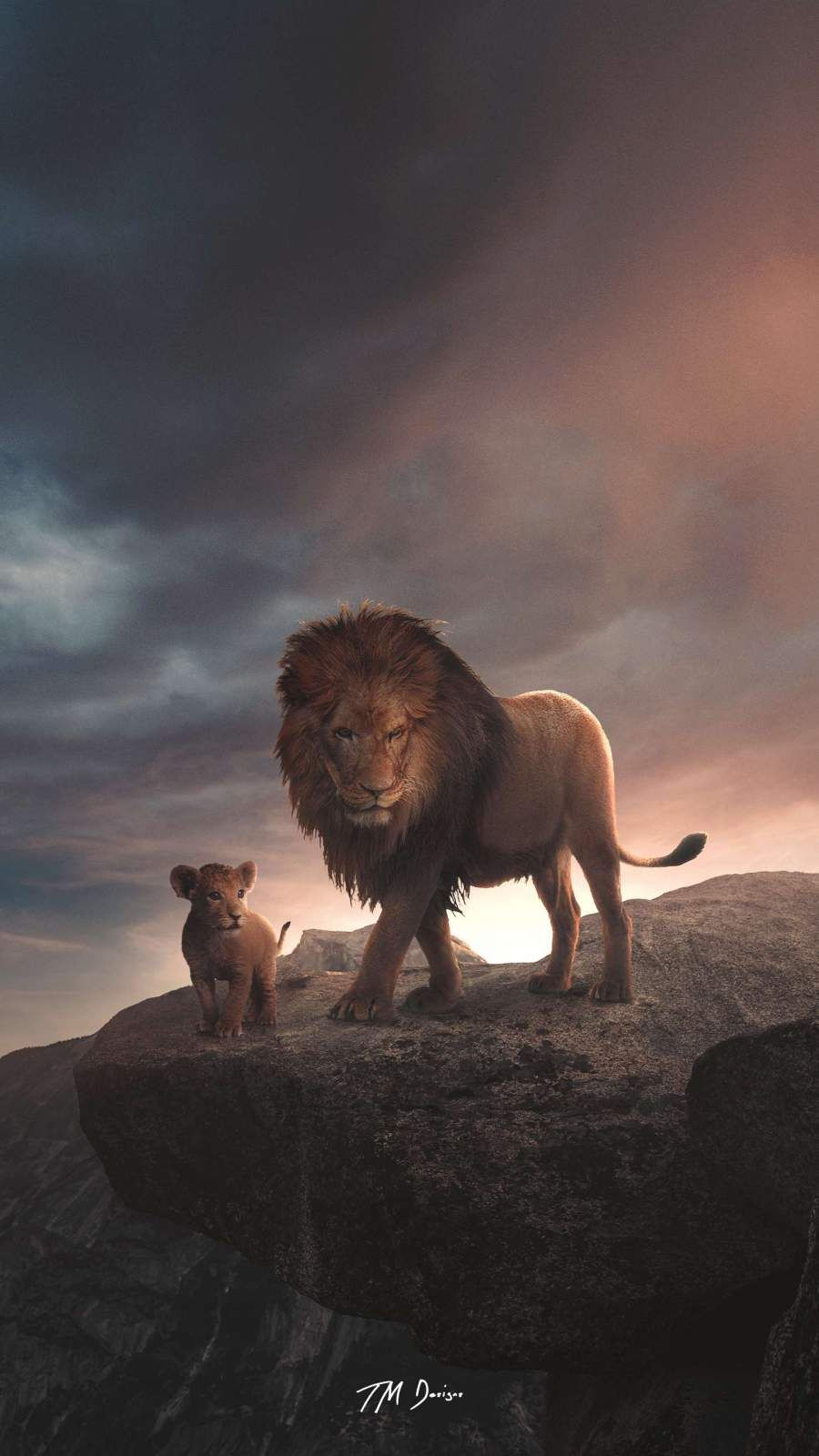 King Lion Iphone Wallpaper Animal Wallpaper Majestic Animals