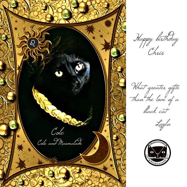 I'm surrounded by Leos 😽Say happy birthday to Chris Poole, dad of @coleandmarmalade cheers, 🍺🍻🎂I made this old English portrait of Cole as an Elizabethan aristocrat. Cole's story is the first in our #blackcatstellall book r