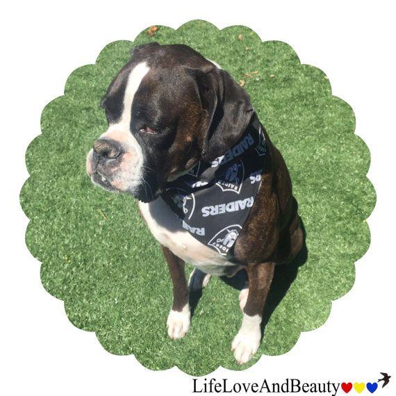 Dog Bandana, Black, Oakland Raiders NFL Fabric, Pet Accessories. Get ready for the upcoming NFL Football season!∙ Hand cut and sewn Oakland Raiders dog or pet bandana in Black.