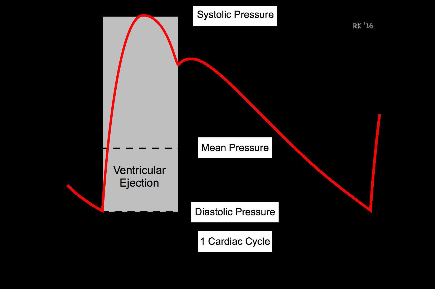 Arterial Blood Pressure In