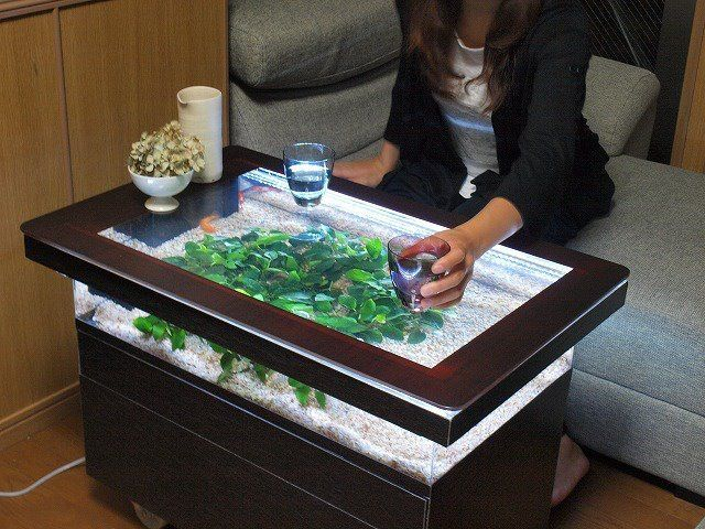 handmade coffee table fish tank from bird's eye with rectangular