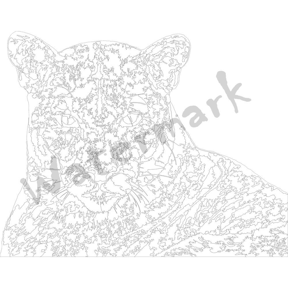 printable coloring pages for adults puma by digitalcatstories