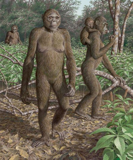 Interbreeding helped us get through the ice age