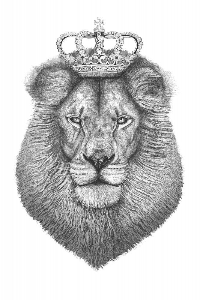The King Lion | Poster | artboxONE | Animals of the World ...