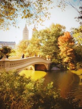 Where we got engaged...Bow Bridge Autumn in New York City
