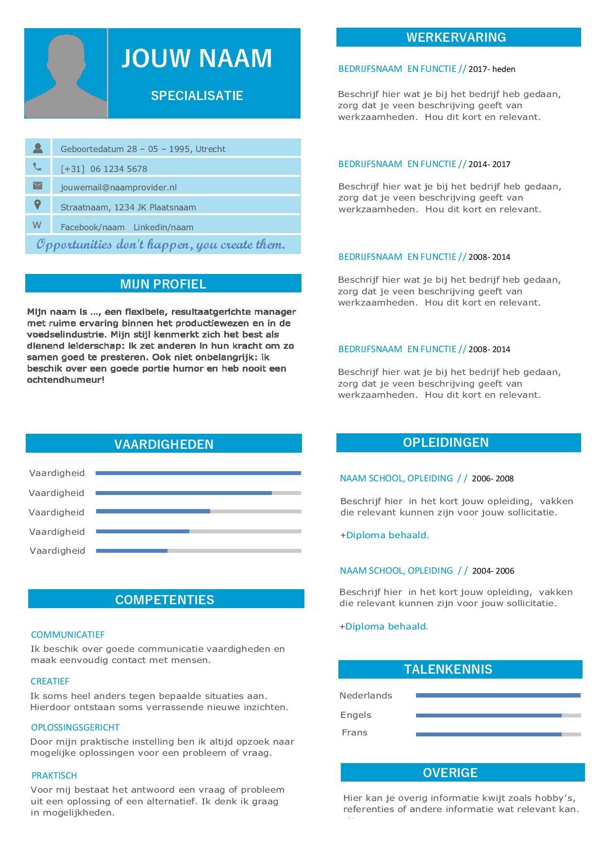 Trek de aandacht van de recruiter met dit professionele CV