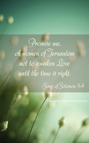 Promise me, O Women of Jerusalem not to awaken love until the time