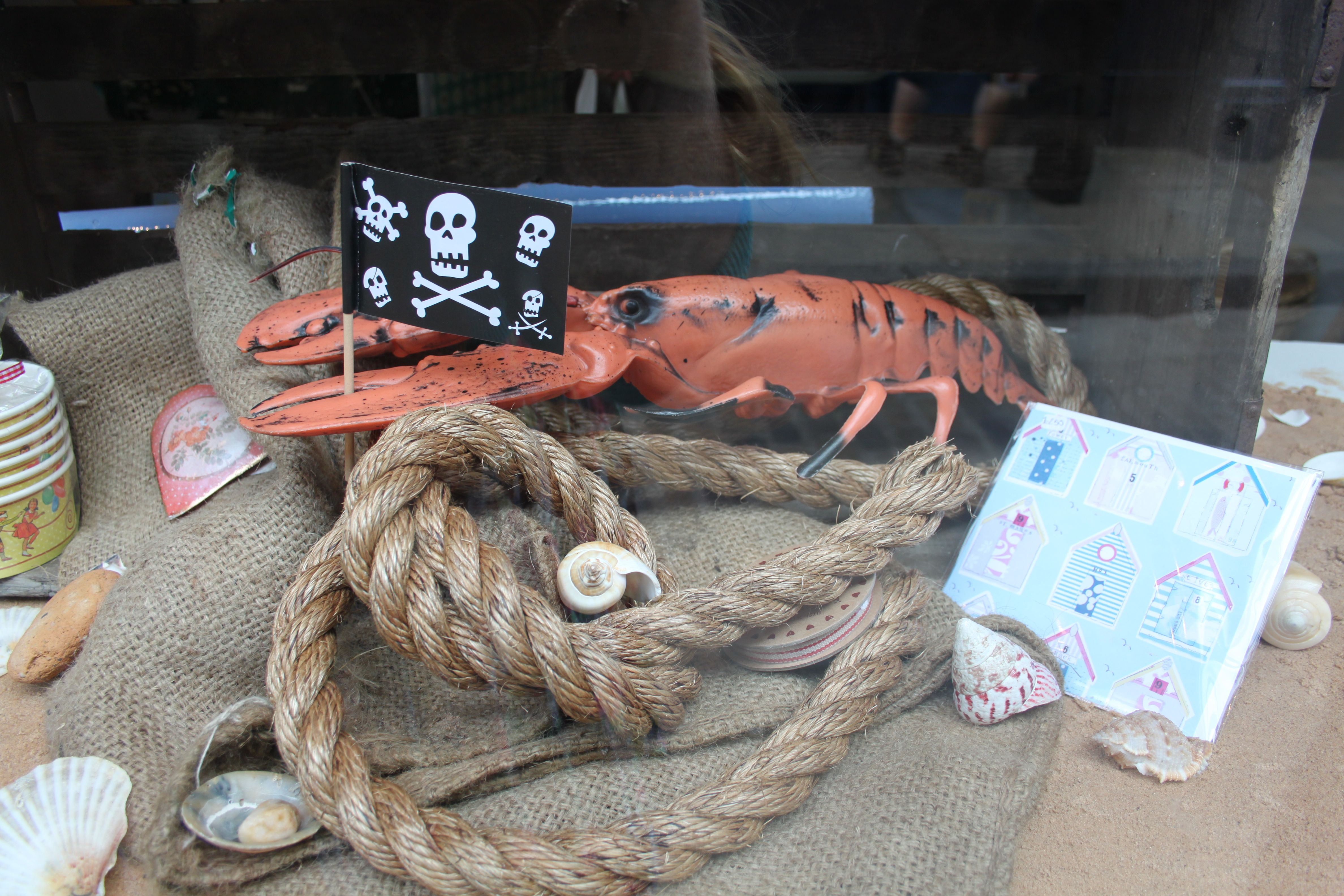 Summer 2012. Larry the Lobster: part-time window model, full time pirate.