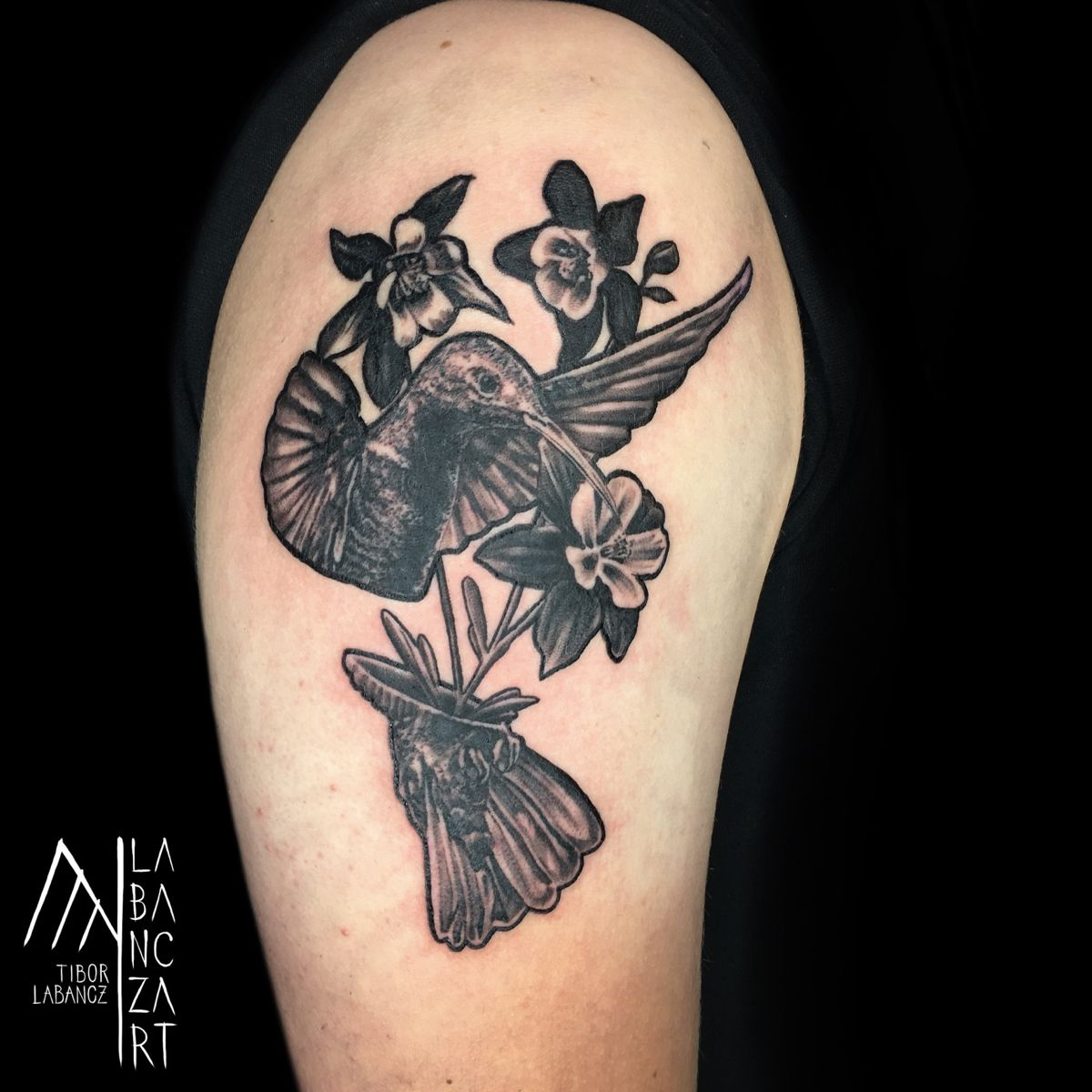 #hummingbirds #tattoo #hummingbirdtattoo #blackandgreytattoo #blackandgrey #naturetattoo #animaltattoos