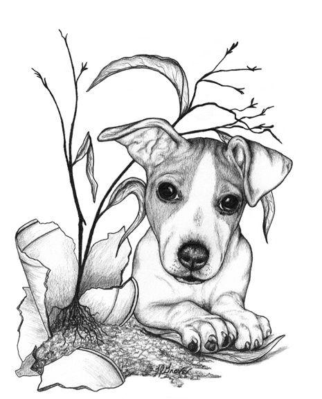 The Wonderful Artwork Of Laurie J Grove The Little Jack Russell