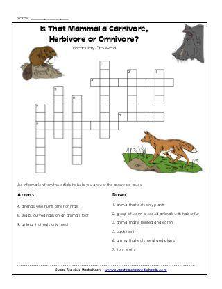 Carnivores Herbivores Or Omnivore Animals Pinterest Worksheets