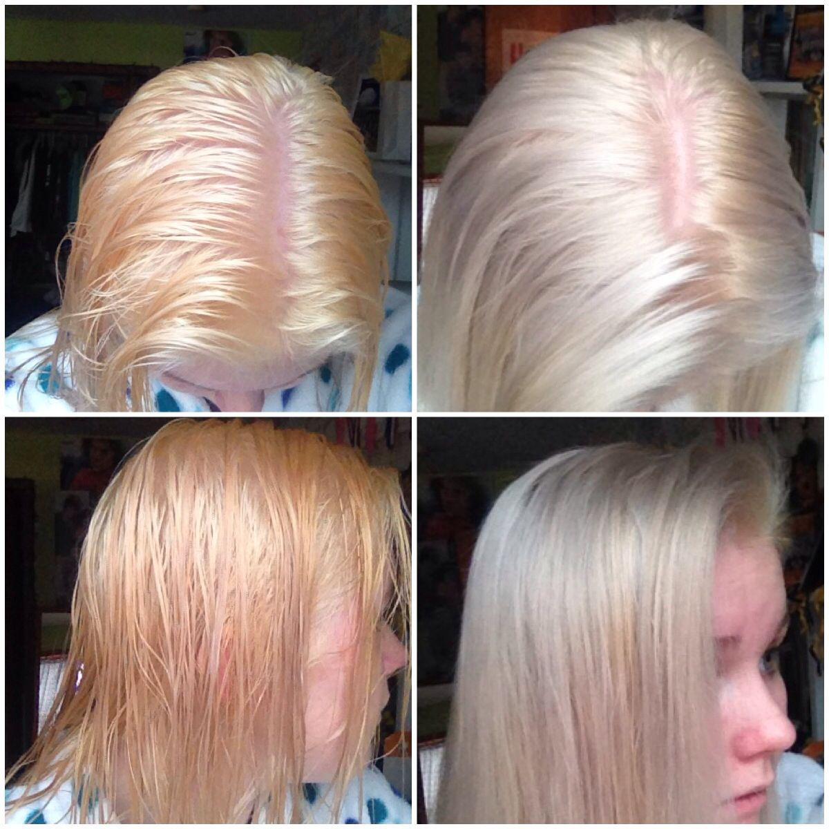 I Bleached My Hair From Blonde To This Pale Orange Color And Then Mixed Wella T18 Toner And 20 Vol Devel Blonde Hair With Roots Dyed Blonde Hair Bleached Hair