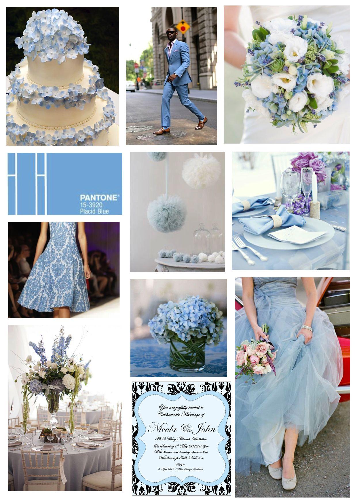Pantone Placid Blue Wedding ideas See more ideas: http://www ...