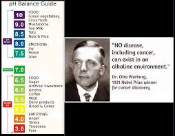 Dr Otto Wartburg Google Search Peace And Love Nobel Prize Winners Soy Tofu
