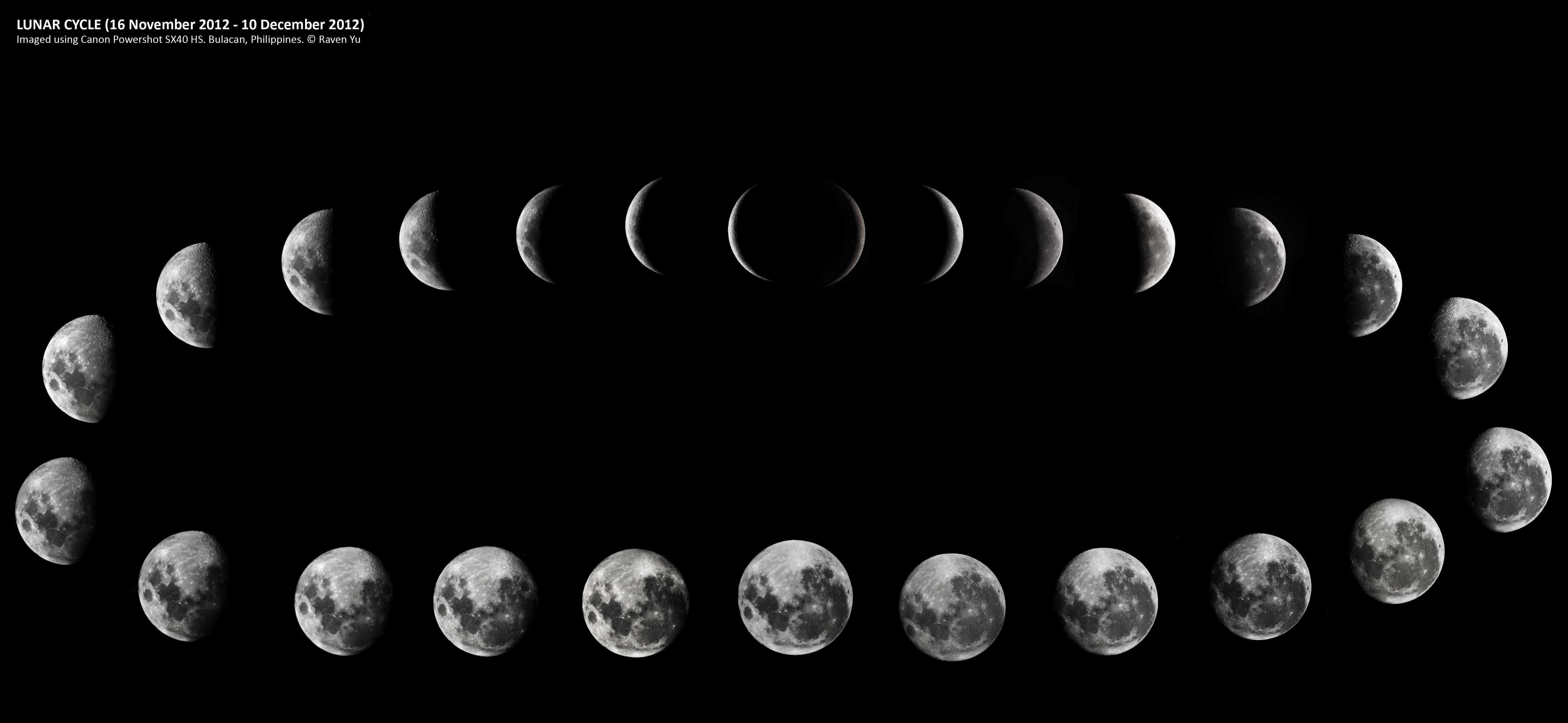 Lunar Phases 1 Copy Moon Phases