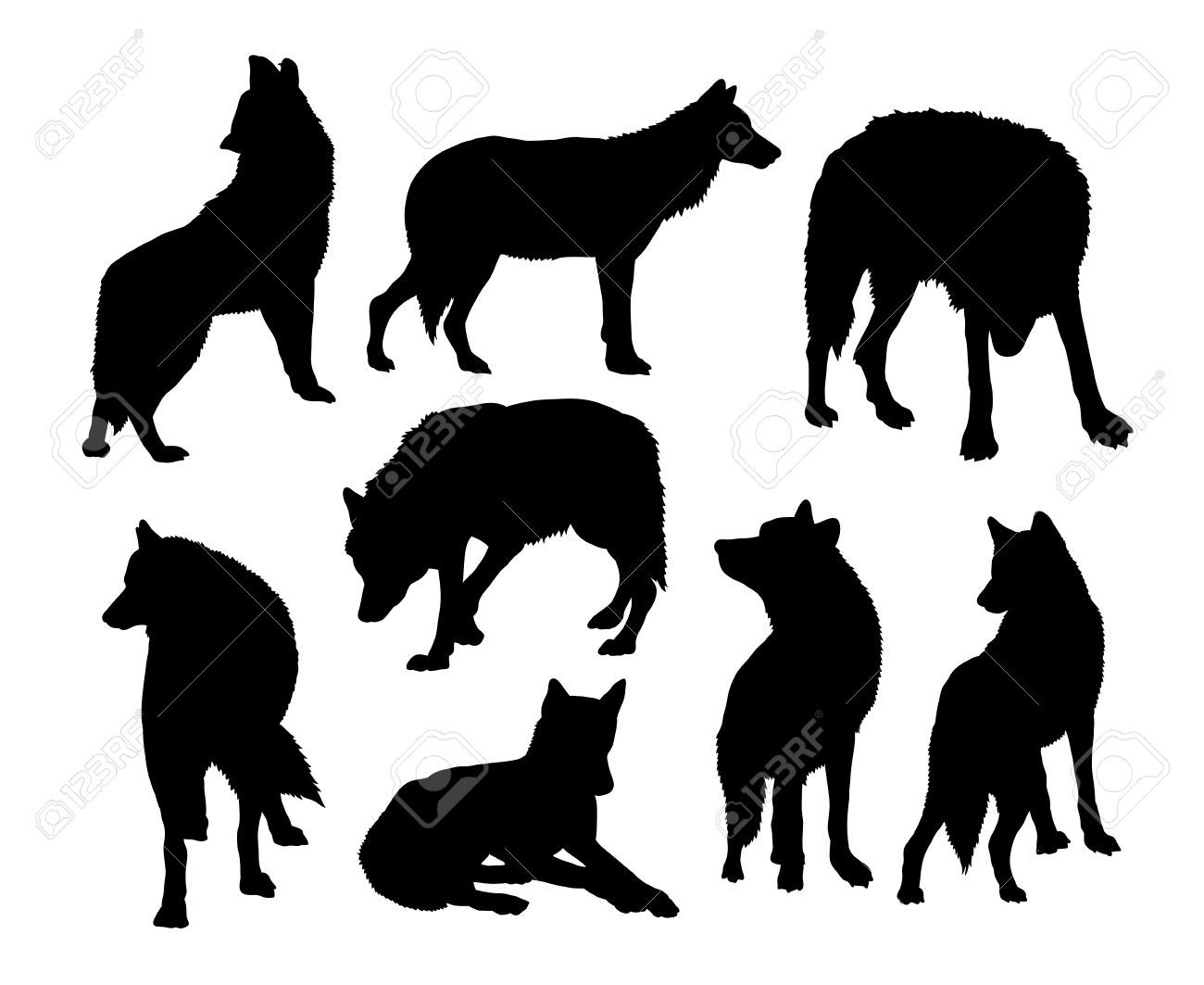 Animal Silhouettes Animals Animals Wild