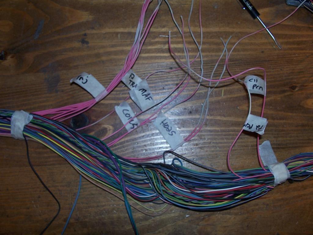 Diagram Vortec 4 8 5 3 6 0 Wiring Harness Info