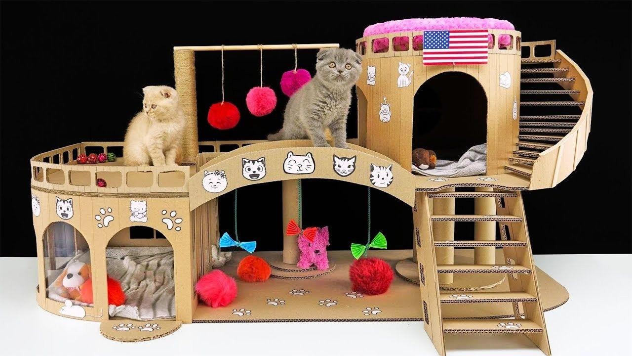 Photo of DIY Amazing Cat House para dos hermosos gatitos