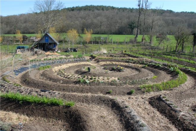 Le jardin mandala jardins pinterest le jardin for Jardin mandala