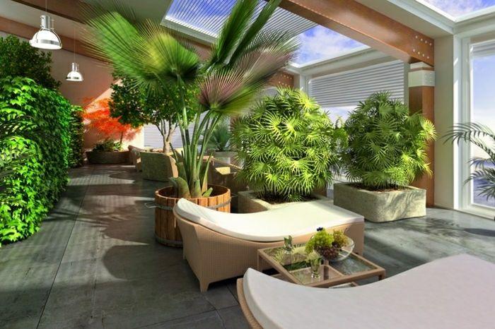 Jardin d\'intérieur - cultiver des plantes en milieu urbain