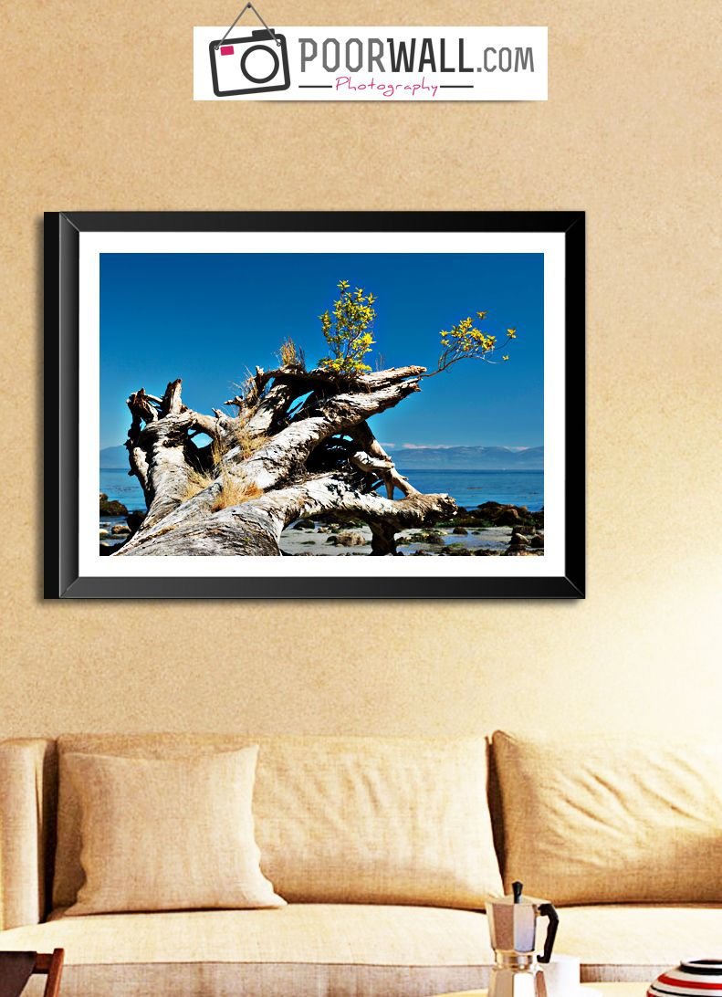 Here is a collection of wall art gifts for your walls! #wallart ...