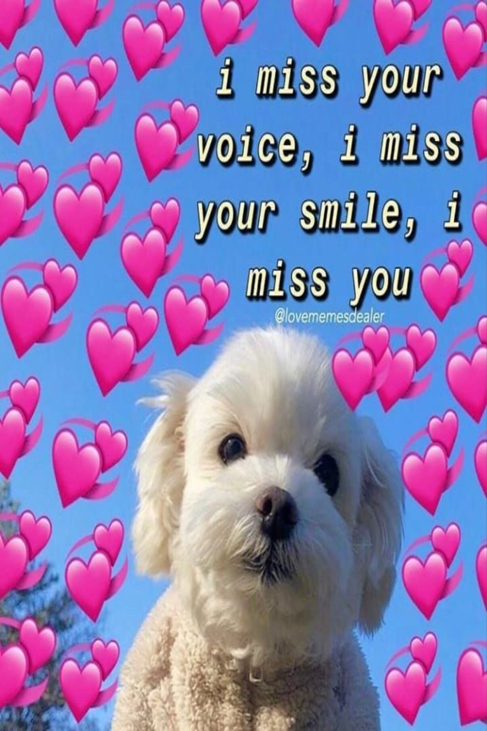 21 Funny I Love You Memes Quotes And Humor Love You Meme Cute Memes Cute Love Memes