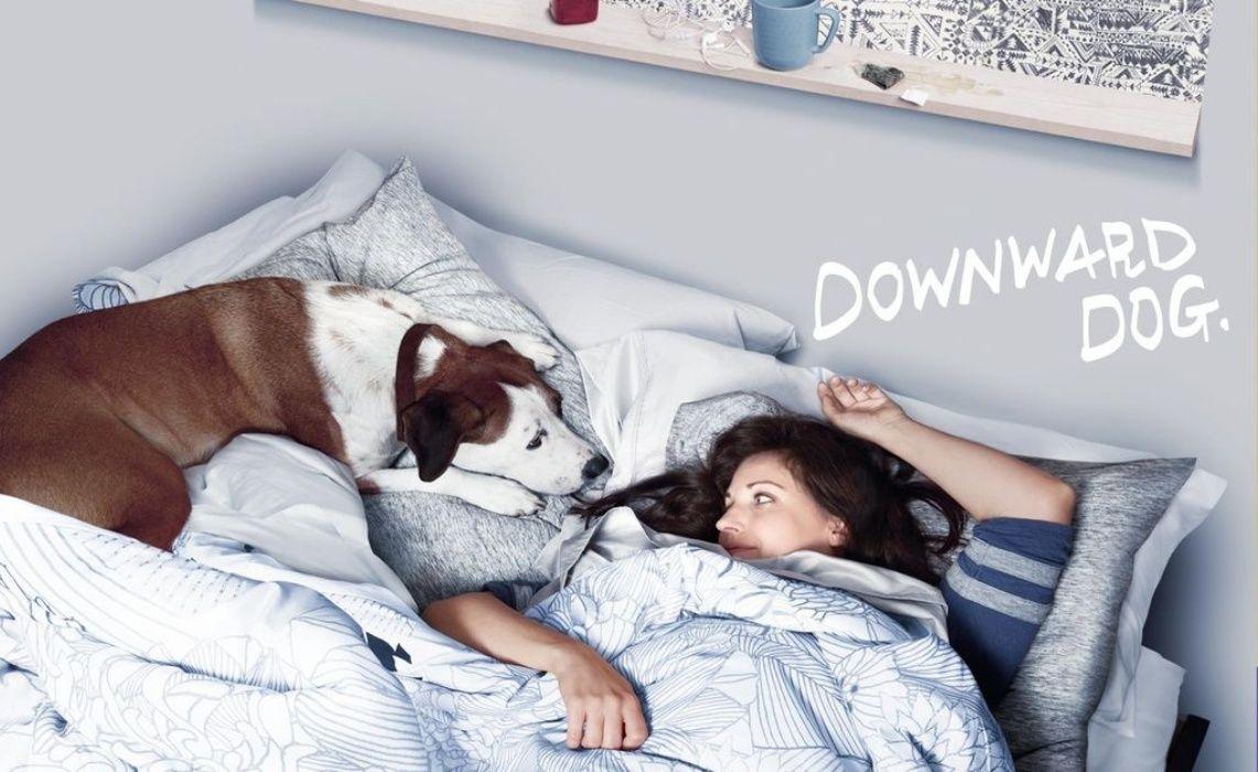 downward dog a TV show for pupps lover Serie à voir