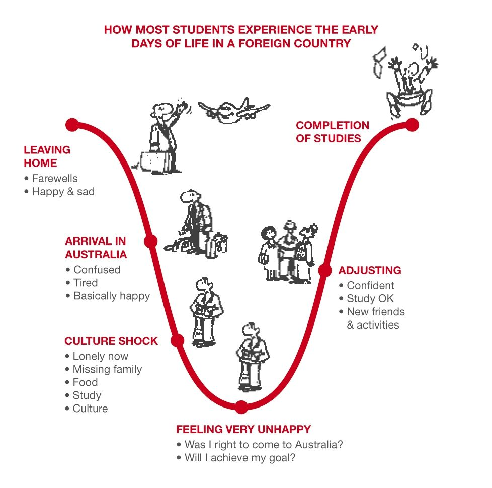 an introduction to the developmental stage of intercultural sensitivity 1 introduction 2 what do we mean by cultural competence   known  developmental intercultural competence model includes six stages.