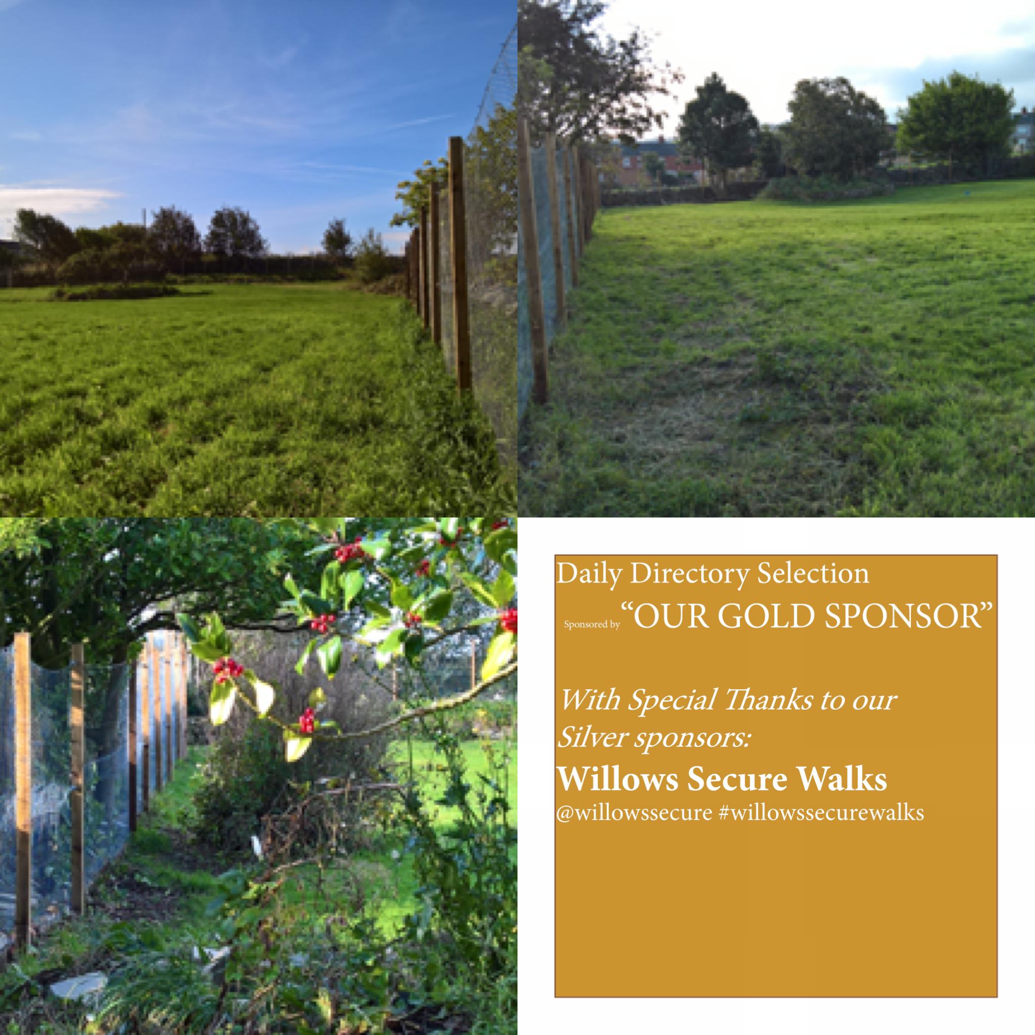 Pin By Dog Walking Fields On Www Dogwalkingfields Co Uk Dog Owners Outdoor Anti Social