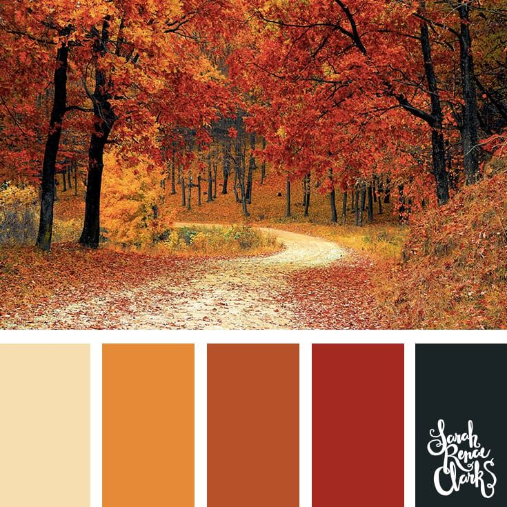 25 Color Palettes Inspired by the Pantone Fall 2017 Color Trends #fallcolors