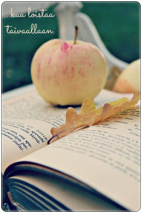 Autumn, book and apple