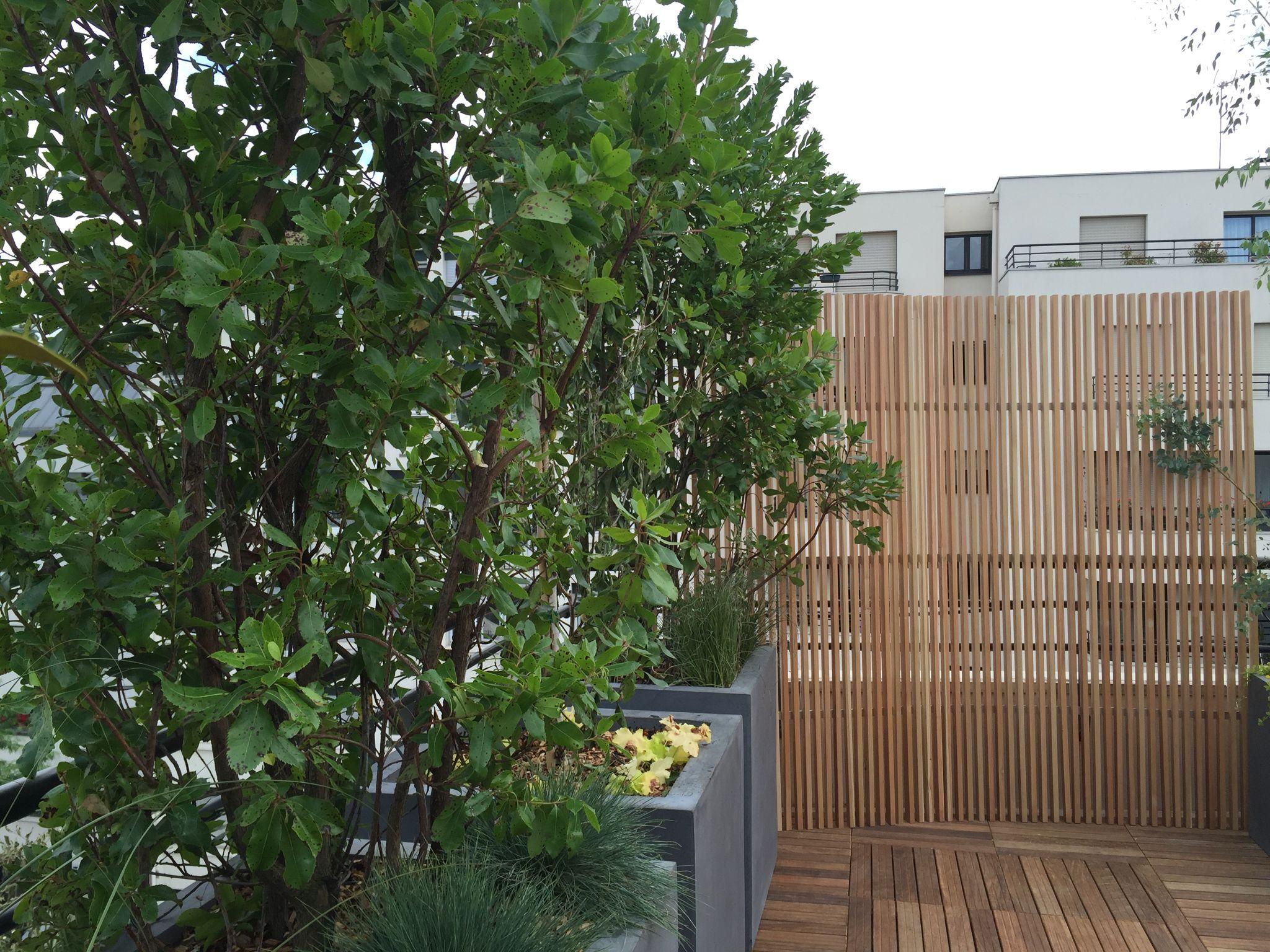 Une terrasse à l'abri des regards grâce à une cloison en bois et une masse végétale occultante
