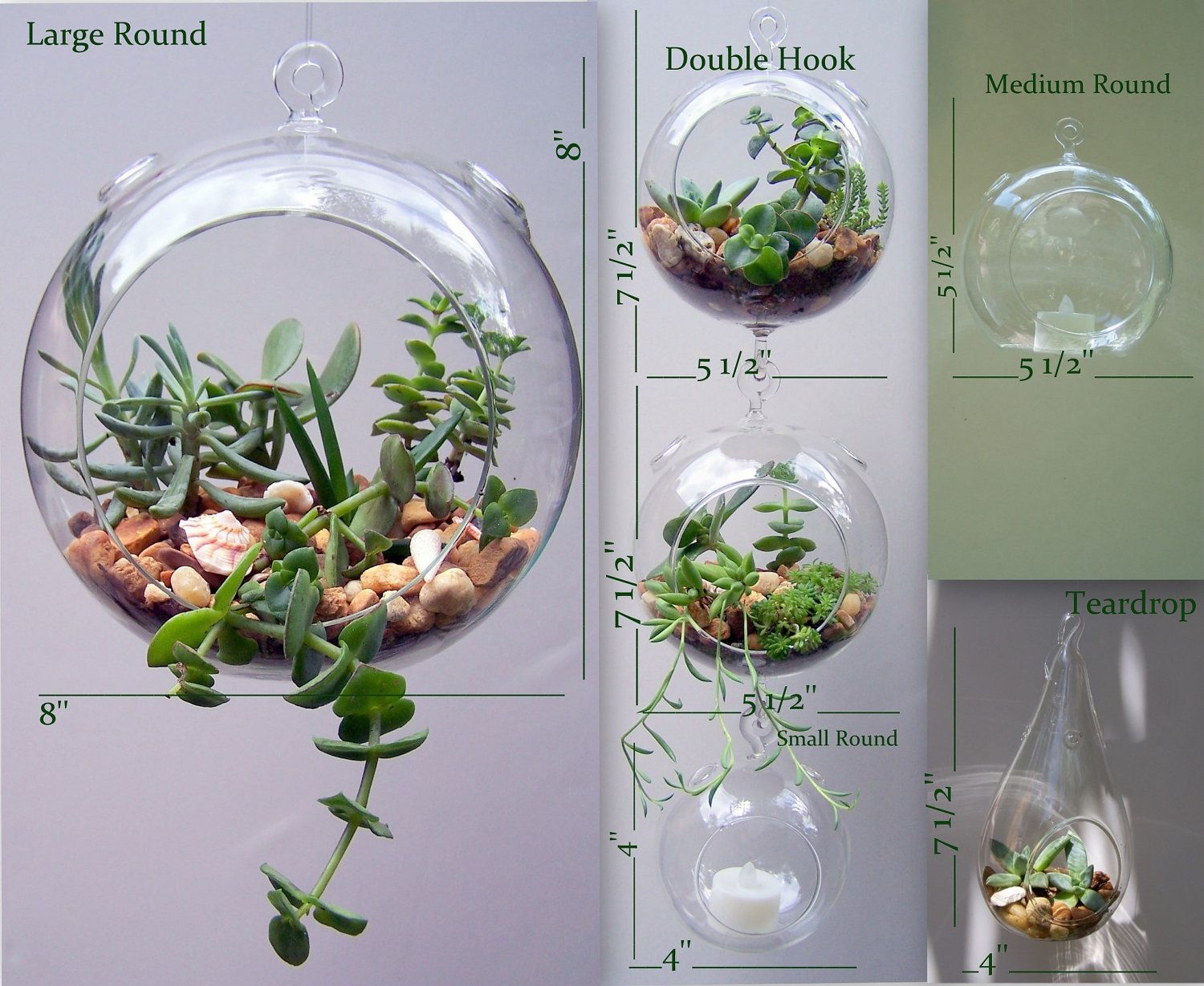 Nice Herb Terrarium Garden Kit Hanging Glass ORB By FlathersCreations, $19.99