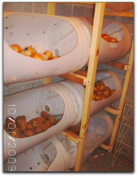 Preppers Post Root Cellering I Want To Do This For My Potatoes Root Cellar Storage Root