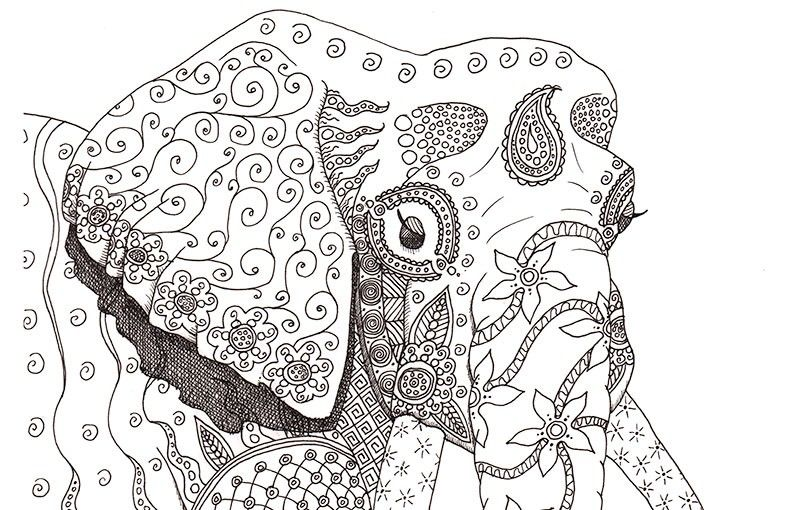 78 Images About Elephants On Pinterest Elephant Face Coloring And Cross Stitch