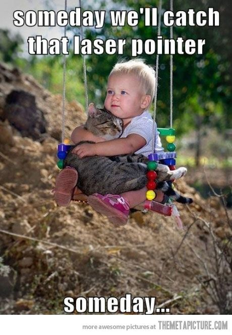 I know, I know, a baby and a cat... But I can't stop laughing! I have to pin this so I can look at it all the time! Still laughing...