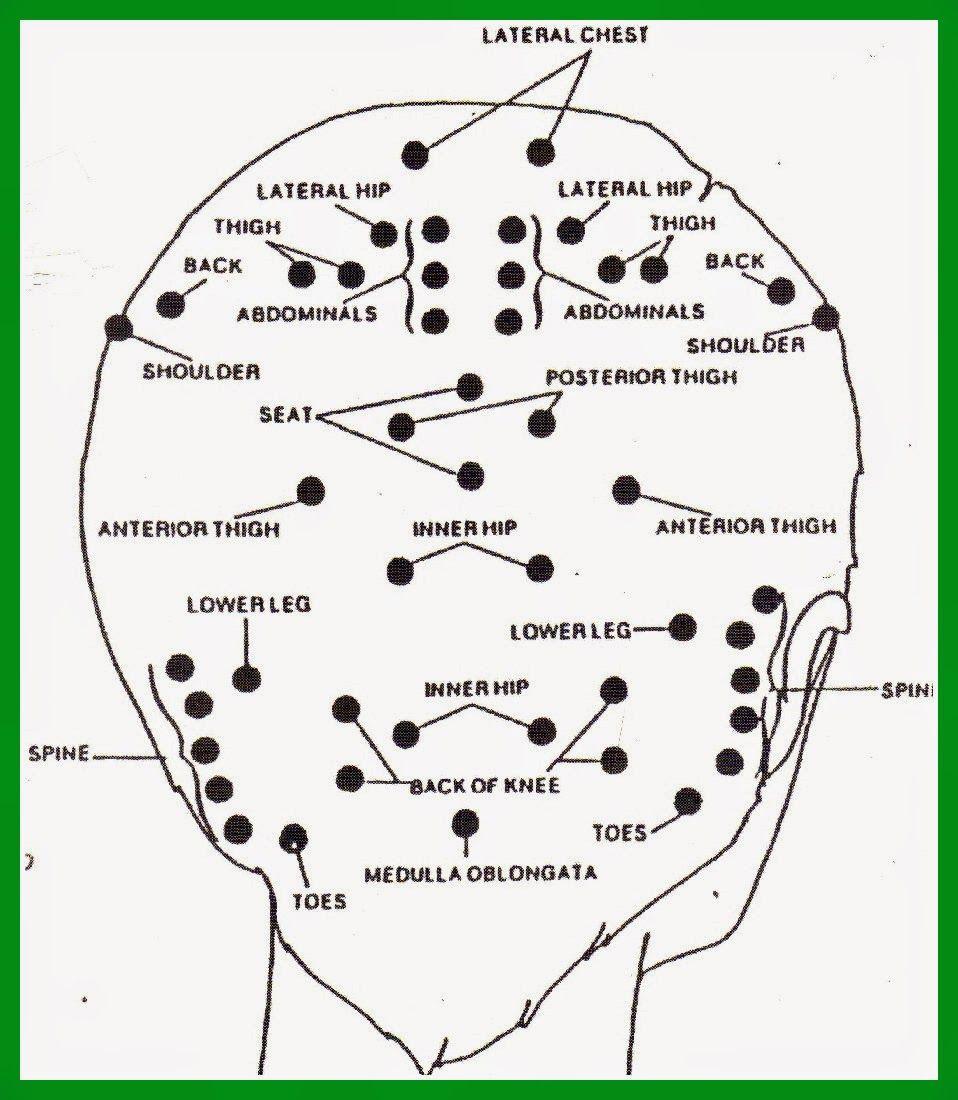 Sunshine And Lemons Massage Points On Your Skull Reflexology Massage Reflexology Massage Therapy
