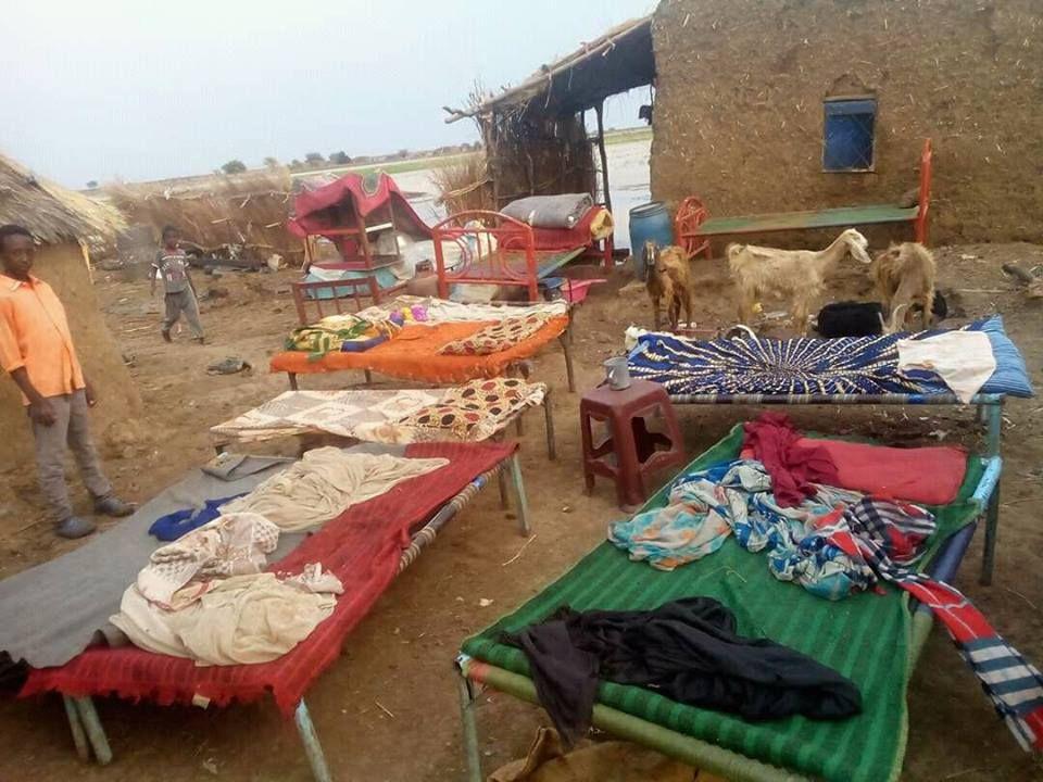حلة موسي تغرق والمنازل تنهار ومخاوف من كارثة صحية