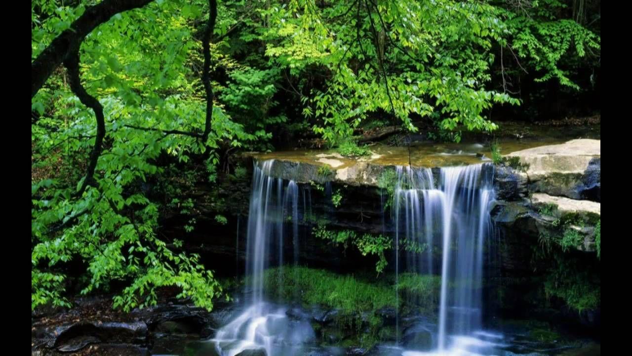 Terry Macalmon Live Worship YouTube Waterfall