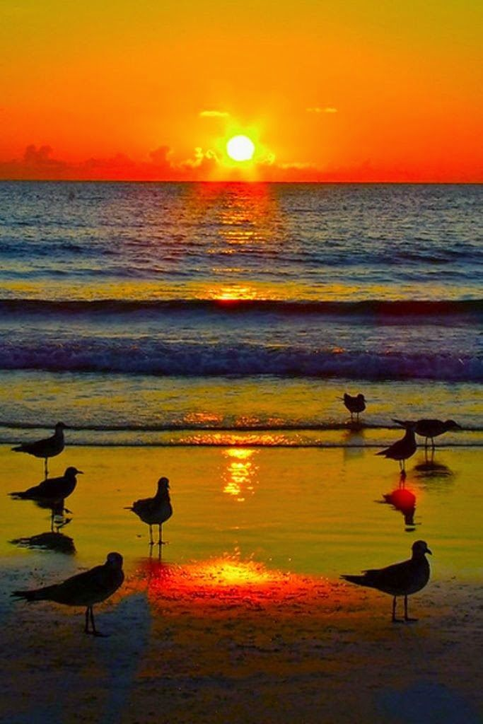 Stunning nature: Don't praise the day before sunset