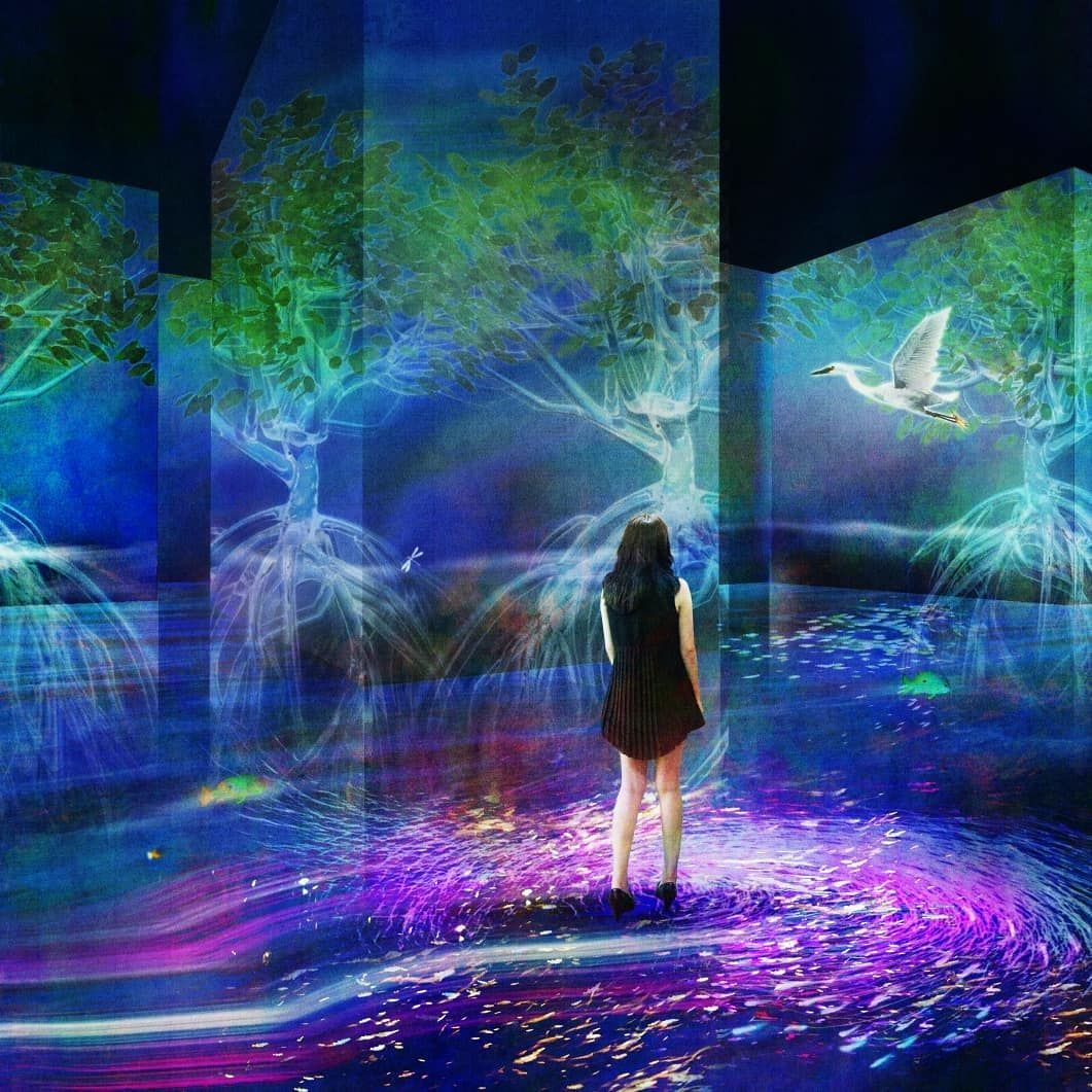 teamlab on instagram early bird tickets are now available continuous life in a beautiful world at international horticultural exhibition 2019 in beijing