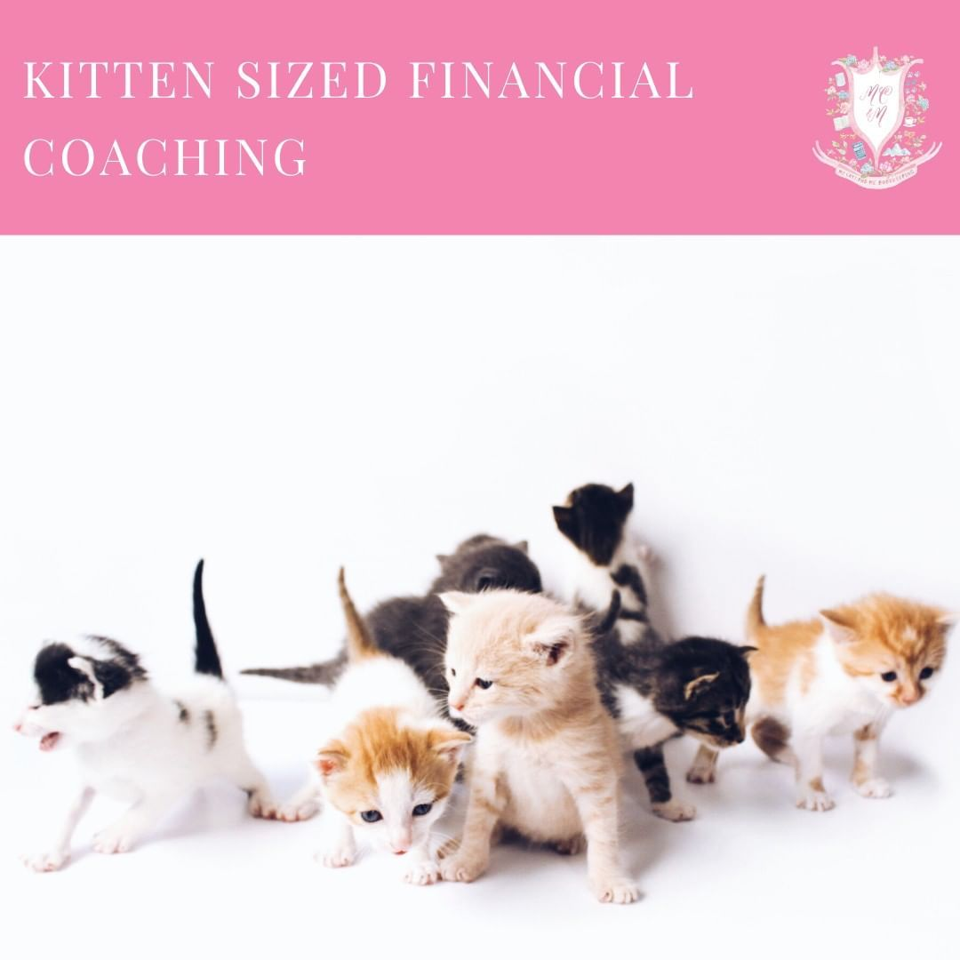 My Cats And Me Bookkeeping Hello Mycatsandme Instagram Photos And Videos In 2020 Financial Coach Small Business Tax Small Business Finance