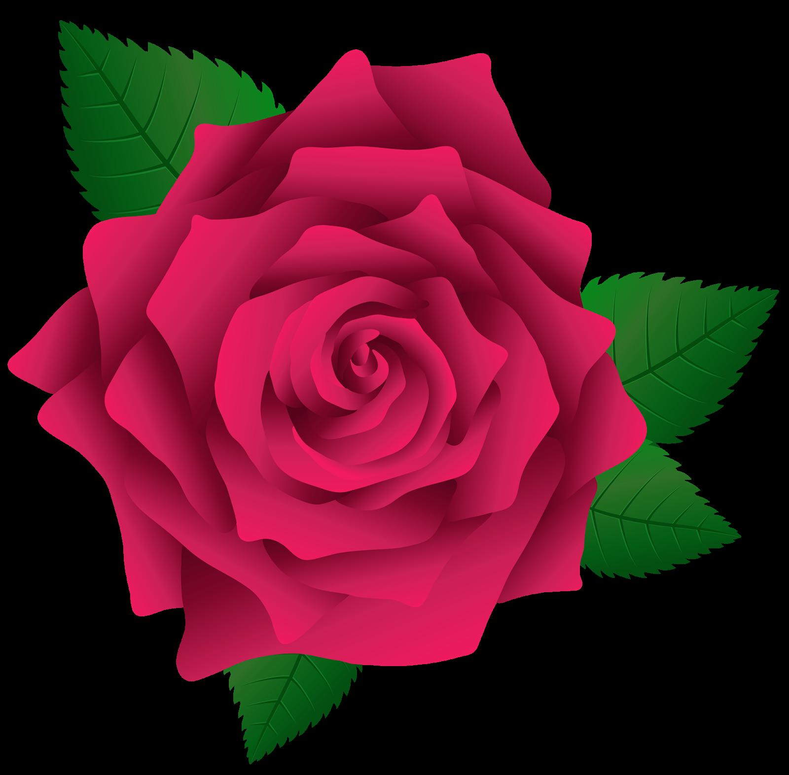 Cantinho Do Blog Red Rose Png Pink Rose Png Flower Phone Wallpaper
